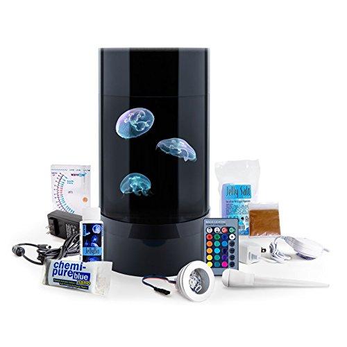 jellyfish-art-jelly-cylinder-nano