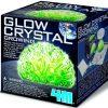 glow-in-the-dark-crystal-growing-science-kit