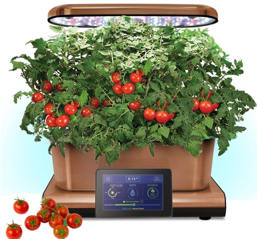 Aerogarden copper stainless indoor garden with cherry for Indoor gardening gadgets