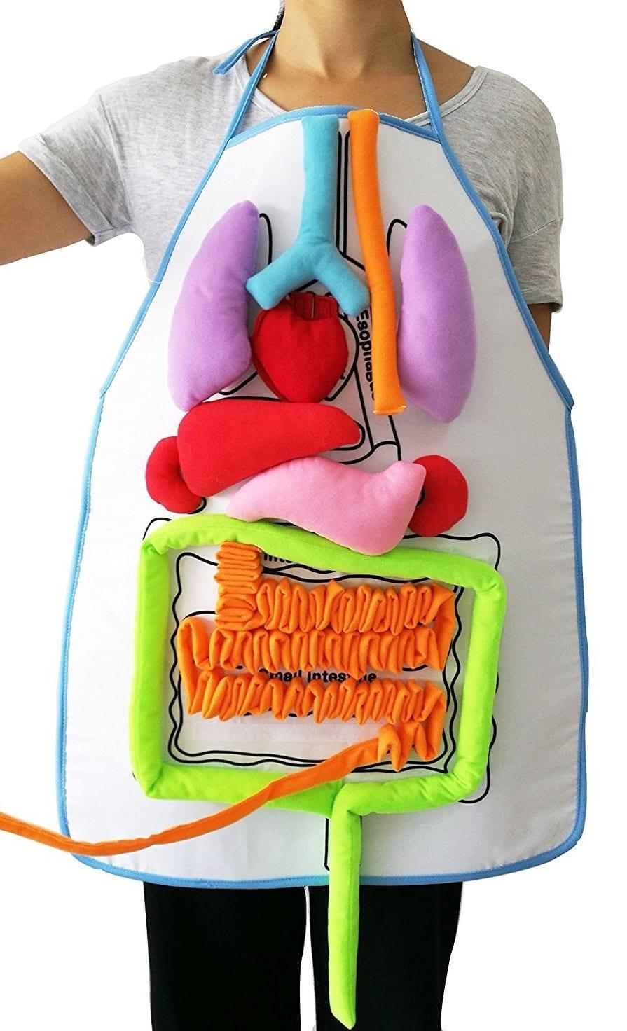 Apron Human Body Organs Awareness Educational Insights Toys