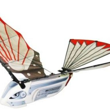 RC Flying Bird Cybird