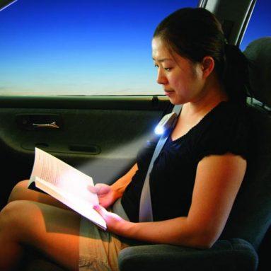 Seatbelt Lights