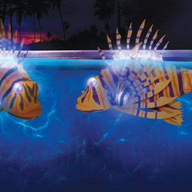 The Illuminated Fish Bots