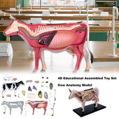 4D Educational Assembled Toy Set