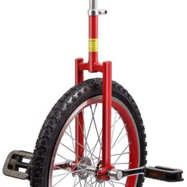 Junior Unicycle