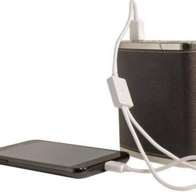 Digital Treasures Power Flask