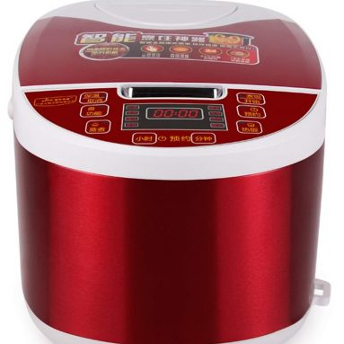 Home Smart Appointment Timed Rice Cooker