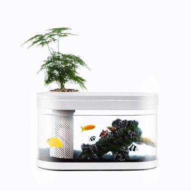 Geometry Fish Tank Aquaponics Ecosystem Small Water Garden Home Decor