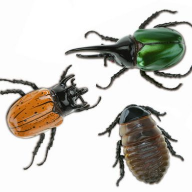 Radio Control Arthropods