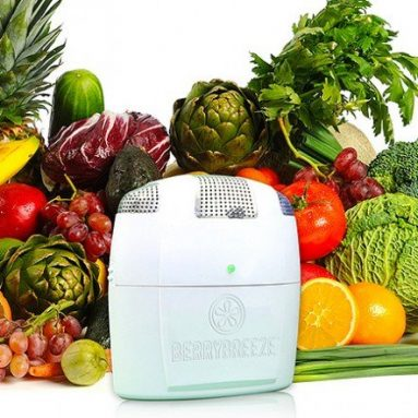 Activated Oxygen Refrigerator Deodorizer