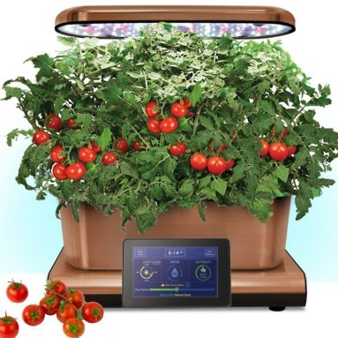 Aerogarden Copper Stainless Indoor Garden with Cherry Tomato Kit