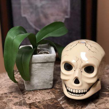 Ancient Skull Diffuser
