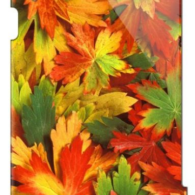 Apple iPad (2nd 3rd 4th Gen) Case Autumn Leaves
