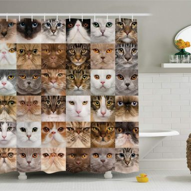 Cat Bathroom Shower Curtain