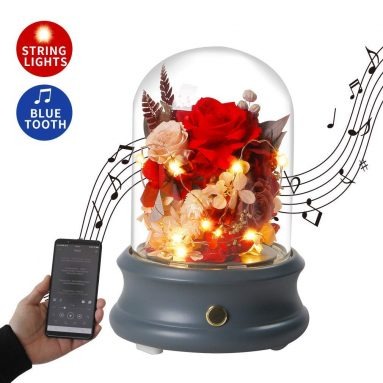 Beauty and Beast Enchanted Rose Bluetooth Speaker with LED Light