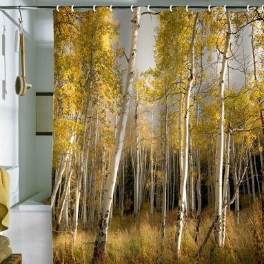 Bird Wanna Whistle Golden Aspen Shower Curtain