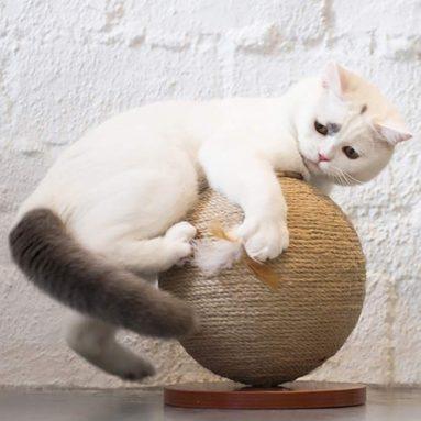 Cat Claws Sisal Cat Scratch Board