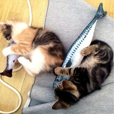 Cat Fish Shape Toothbrush with Catnip