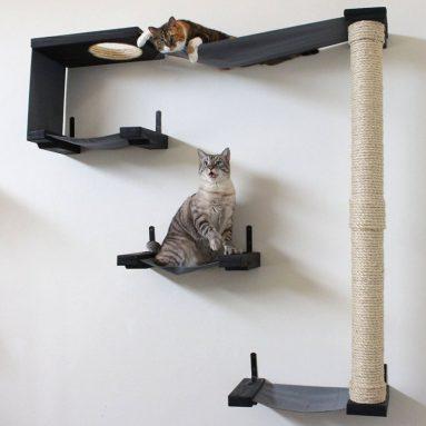 Cat Hammock and Climbing Activity Center
