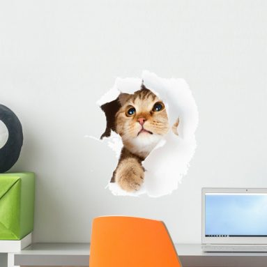 Cat in Paper Side Torn Hole Wall Decal Peel and Stick Graphic