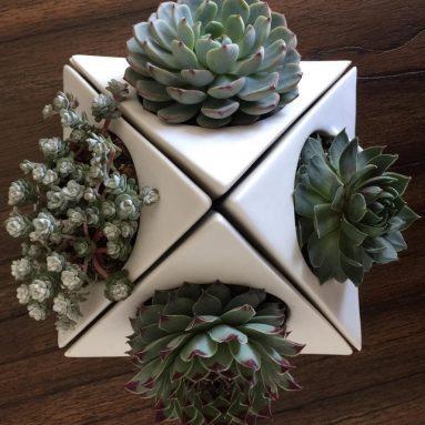 Ceramic Planter Pot for Succulent Cactus and Airplant