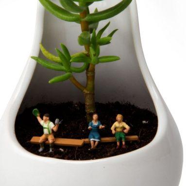 Noel, Ceramic Terrarium