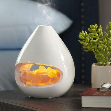 The Himalayan Salt Lamp Diffuser