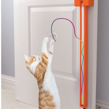 Cat String Toy