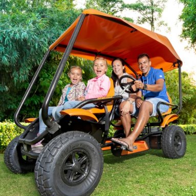 The All Terrain Touring Cart