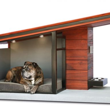 The Canine's Passive Solar Condominium