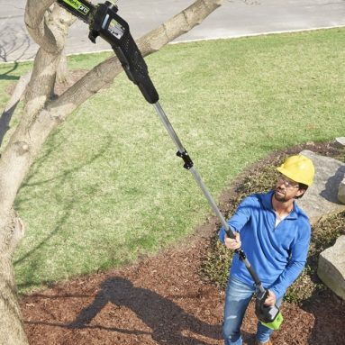 The Best Cordless Pole Saw