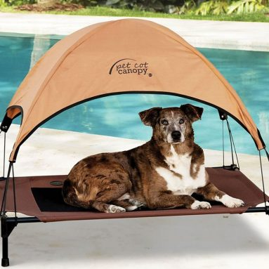The Canopied Pet Lounger
