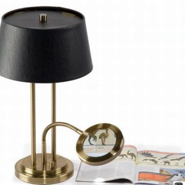 The Desk Lamp With Lighted Magnifier