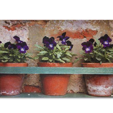 Printed Doormat – Flower Pots