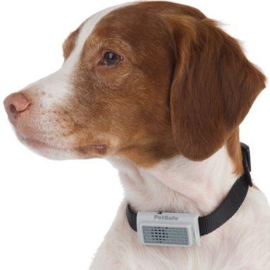 The Bark Deterring Ultrasonic Collar