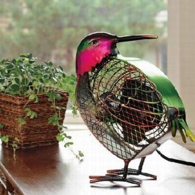 Hummingbird Fan