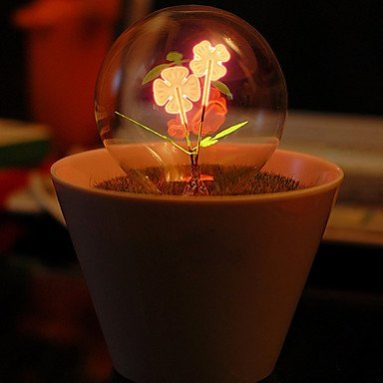 Creative Energy Saving Led Table Light Glass Globe Shade