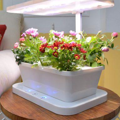 Hydroponics  Soil Indoor FlowersVegetable Planter Growing Lamp