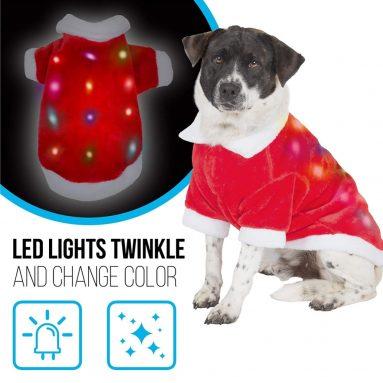 Dog Christmas Costume with Lights