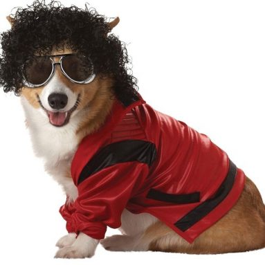 Pop King Md Cat and Dog Costume Halloween Costume