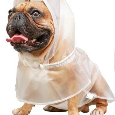 Dog Raincoat Rain Coat Jacket Poncho
