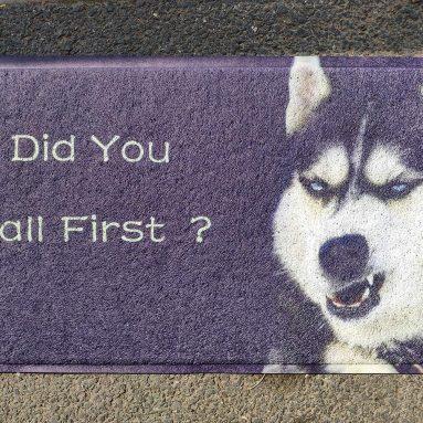 Door Mat Floor Mat Did You Call First Funny Dog