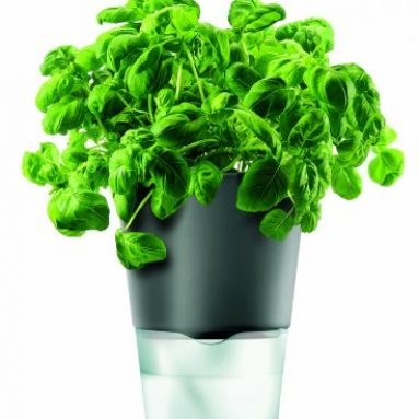 Eva Solo Herb Pot Self-Watering