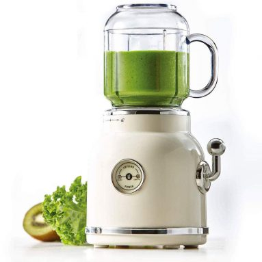 Fruit Electric Blender