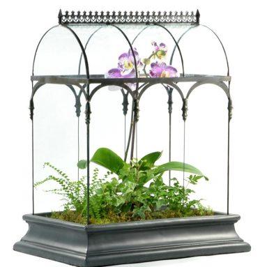 Glass Terrarium Planter Container Wardian Case