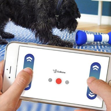 GoBone Interactive App-Enabled Smart Bone for Dogs and Puppies