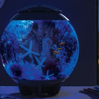 HALO Aquarium with LED Light