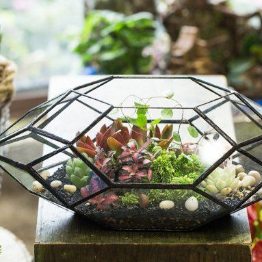 Handmade Irregular Polyhedral Geometric Glass Terrarium Planter