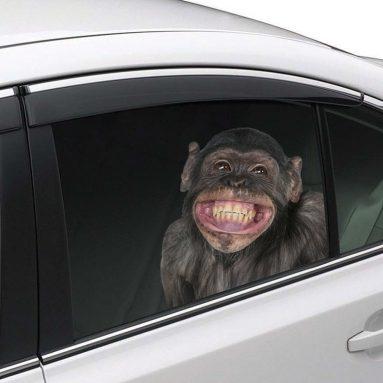 Joy Riders Chimp Window Cling