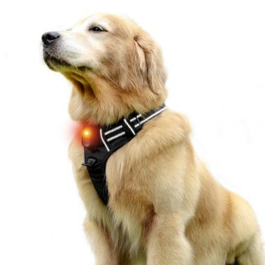 LED Dog Harness – USB Rechargeables  – Illuminated
